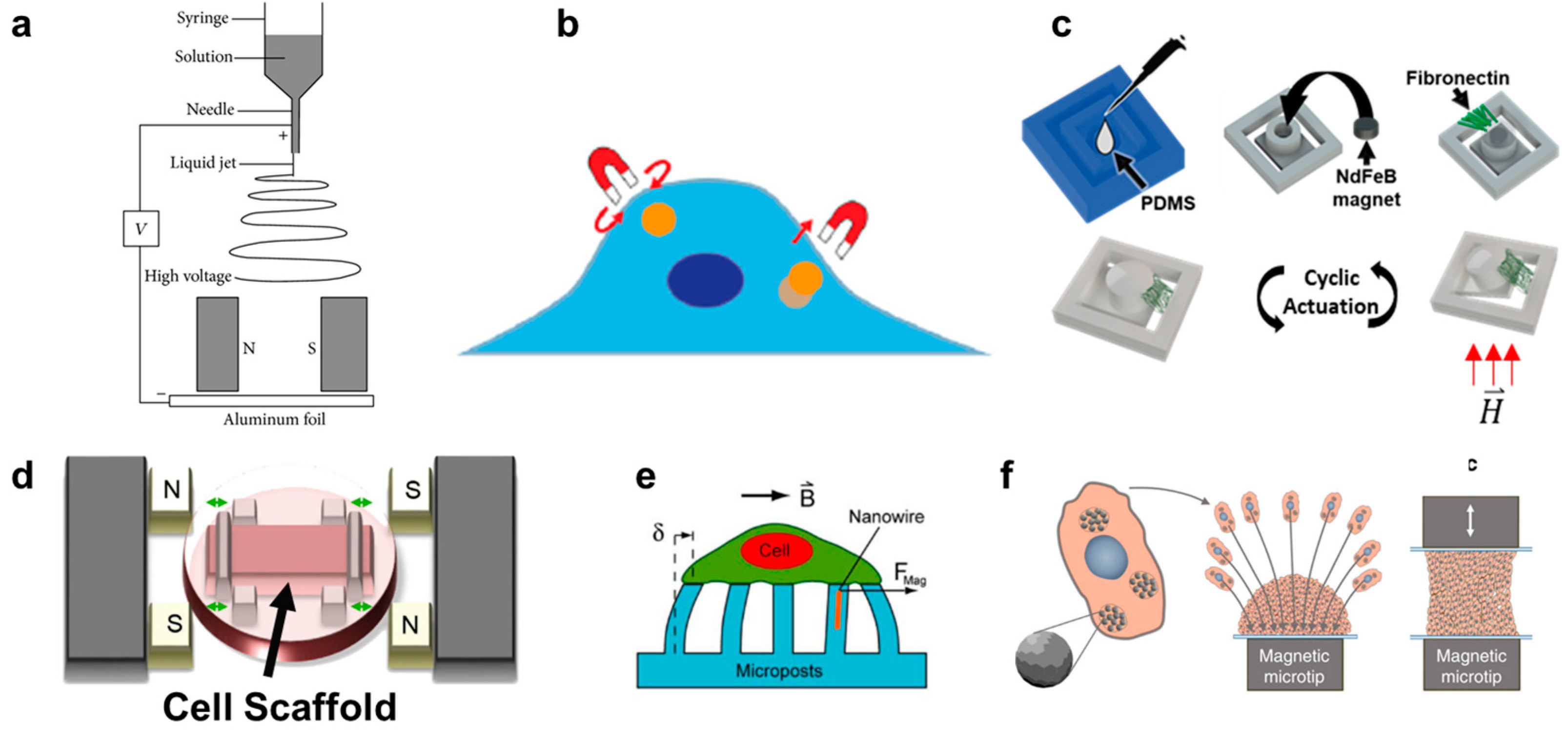 Our review of in vitro magnetic techniques for cancer research is published at Cancers!