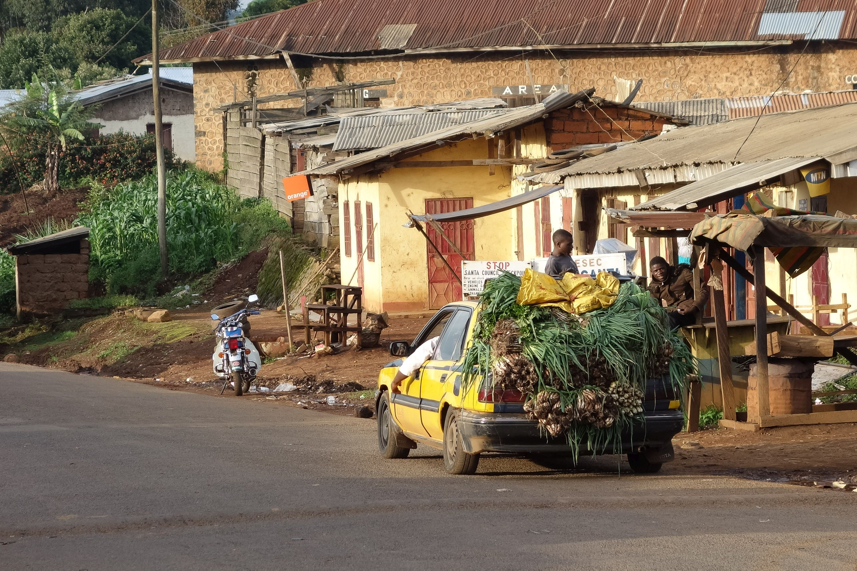 Cameroon_ACREST_2013_022