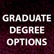 Graduate degree options