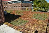 CE Green Roof Lab Dedication