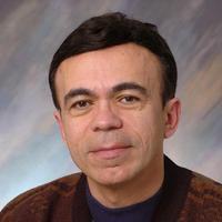 Professor Babak Ziaie