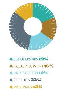 Scholarships 19%, Faculty Support 16%, Unrestricted 19%, Facilities 33%, Programs 13%