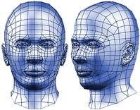Photo of 3D printed heads