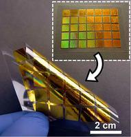 Photo of flexible plasmonics