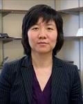 Chen Yang profile picture