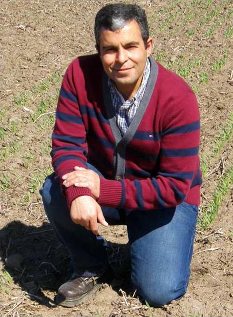 Mohsen Mohammadi profile picture