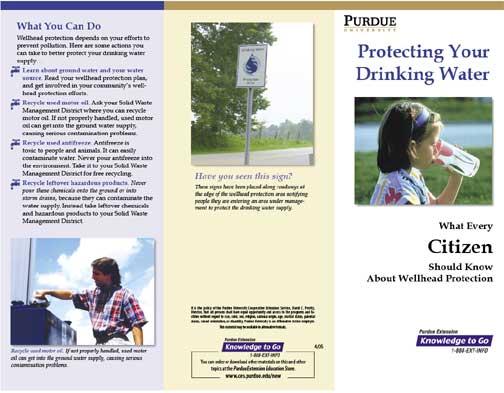 Edu 310 learning team assessment brochure