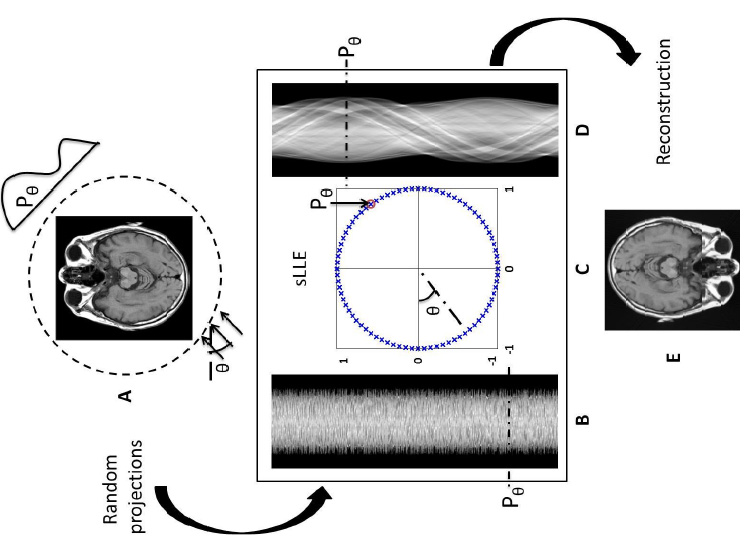 sLLE: Spherical Locally Linear Embedding with Applications to Tomography