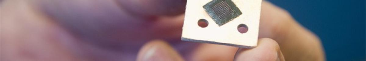 Picture of a microchip