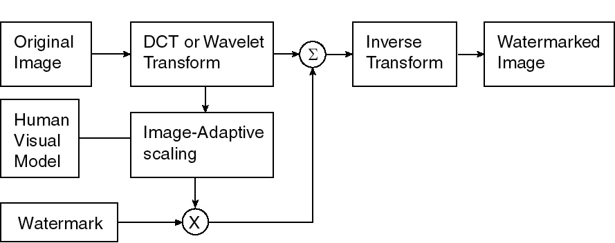 Transactions on Circuits and Systems for Video Technology
